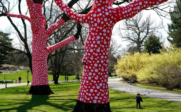"Yayoi Kusama's ""Ascent of Peas on Trees"" is seen at the New York Botanical Garden"