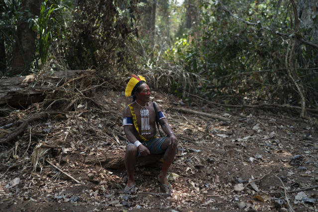 Indigenous leader in Brazil's Amazon tries to thwart loggers