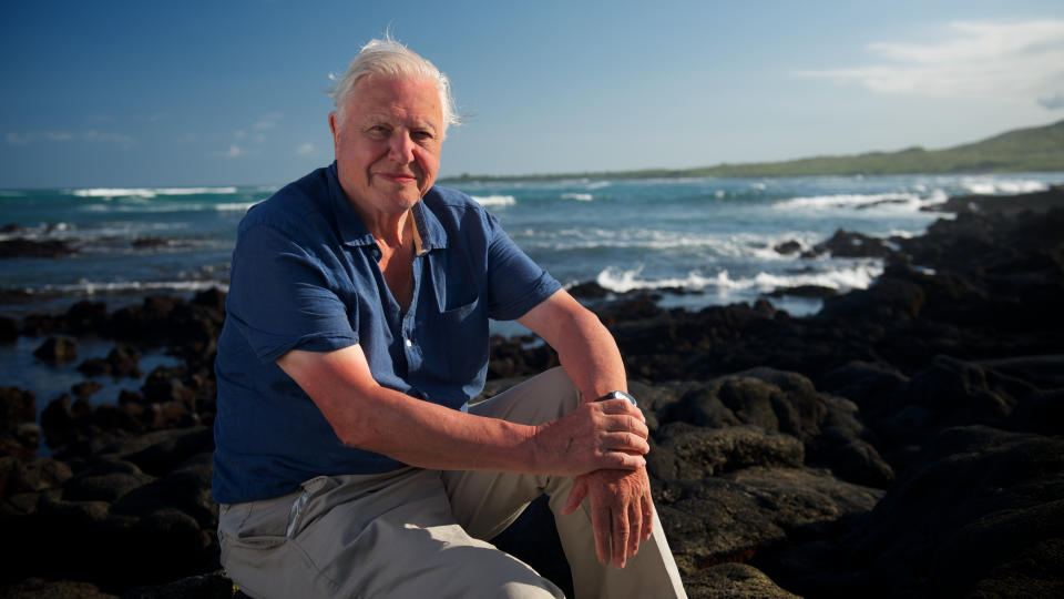 'David Attenborough's Global Adventure' returns to Sky and NOW this month. (Sky UK)