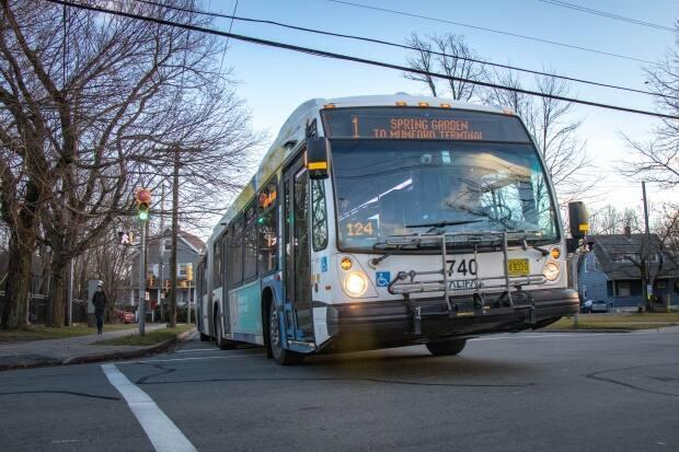 The municipal auditor's report on Halifax's transit technology project was released Thursday. (Robert Short/CBC - image credit)