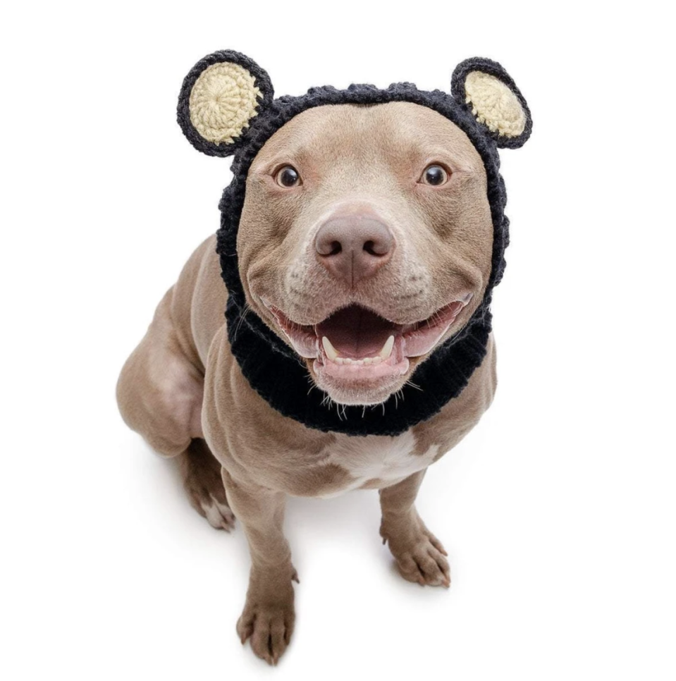 """<p><strong>Zoo Snoods</strong></p><p>zoosnoods.com</p><p><strong>$15.99</strong></p><p><a href=""""https://www.zoosnoods.com/collections/zoo-snoods/products/black-bear-zoo-snood"""" rel=""""nofollow noopener"""" target=""""_blank"""" data-ylk=""""slk:SHOP IT"""" class=""""link rapid-noclick-resp"""">SHOP IT</a></p><p>This is fashion <em>and </em>function, the ultimate in a painfully cute gift that they'll actually use. Zoo Snoods makes snoods and sweaters for dogs that a) keep them warm in the winter and b) are painfully cute. My favorite is the <a href=""""https://www.zoosnoods.com/products/lion-zoo-snood"""" rel=""""nofollow noopener"""" target=""""_blank"""" data-ylk=""""slk:lion snood."""" class=""""link rapid-noclick-resp"""">lion snood.</a></p>"""