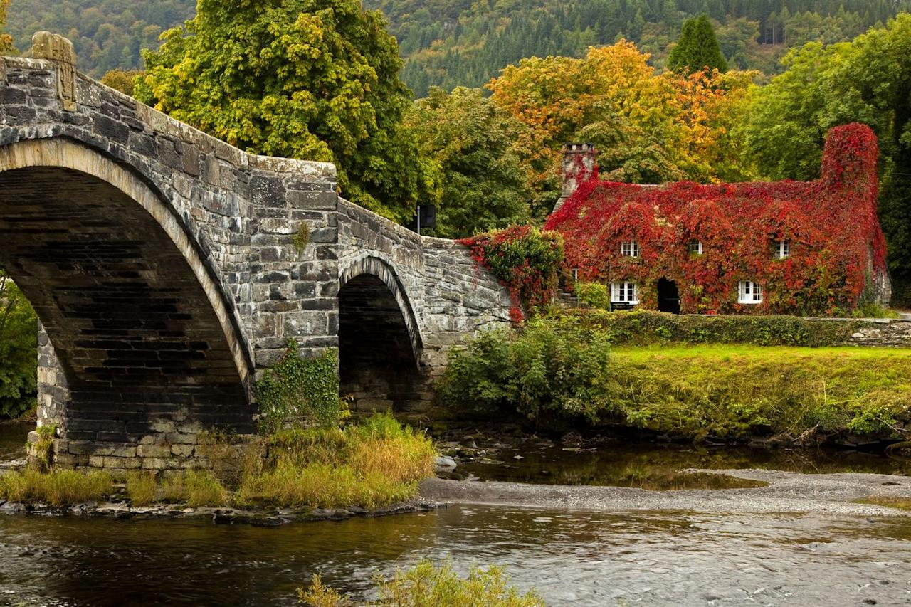 """<p>Add this tiny market town to your must-visit list this autumn. Llanrwst's three-arched bridge across the Conwy (with its famous cottage at the end) is the first thing you'll see upon arrival. Whether you're looking for a <a href=""""https://www.countryliving.com/uk/travel-ideas/staycation-uk/g34187482/uk-staycation-green-spaces/"""" target=""""_blank"""">staycation</a> or a day trip, this gorgeous town will set your heart on fire. </p><p><a class=""""body-btn-link"""" href=""""https://www.visitconwy.org.uk/towns-and-villages/llanrwst"""" target=""""_blank"""">BOOK NOW </a></p>"""