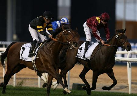 Horse Racing - Dubai World Cup - Meydan Racecourse, Dubai - 25/3/17 - Francois-Xavier Bertras rides The Right Man to the finish line to win the fifth race. REUTERS/Stringer
