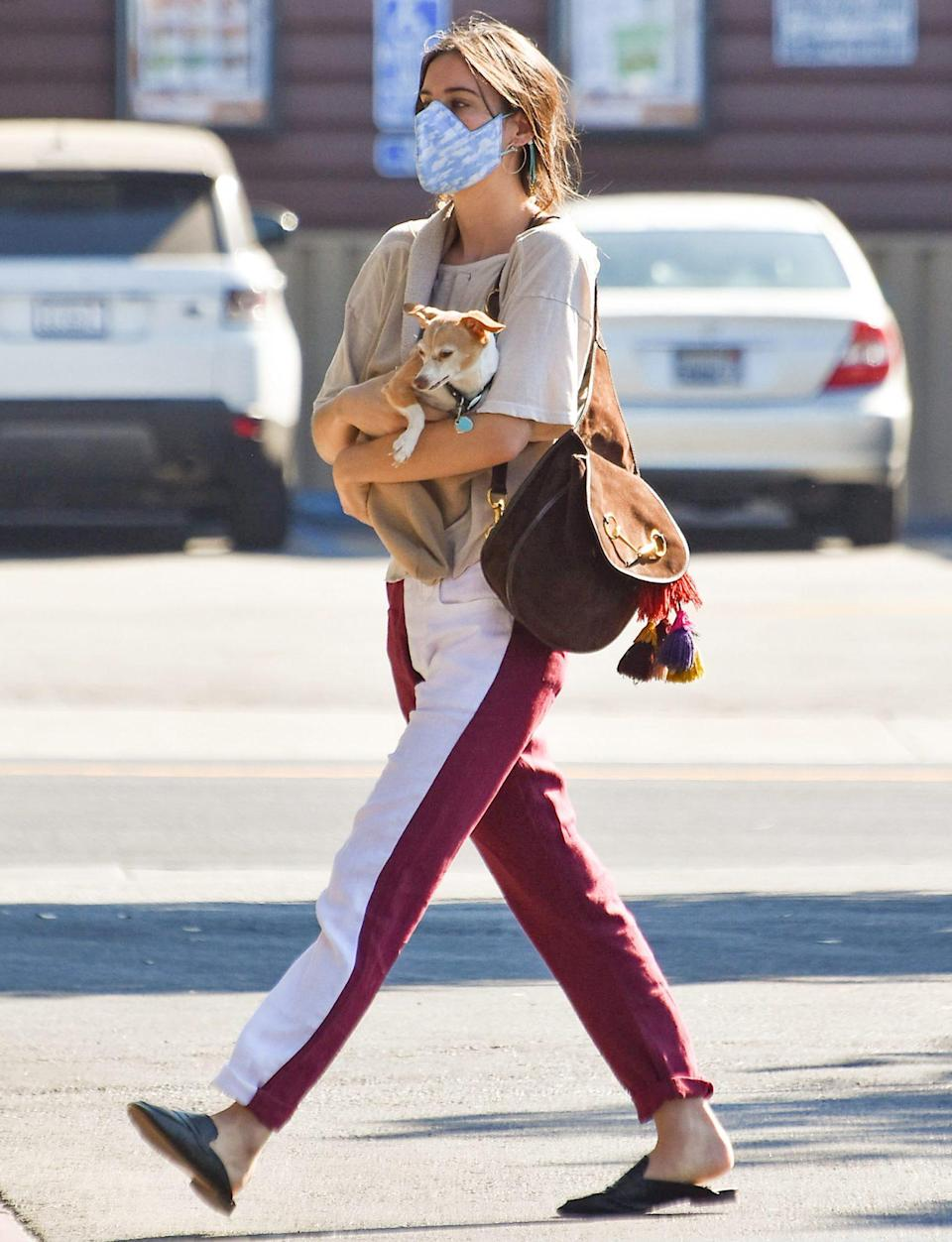 <p>Scout Willis carries her puppy in her arms as she steps out in L.A. on Thursday.</p>