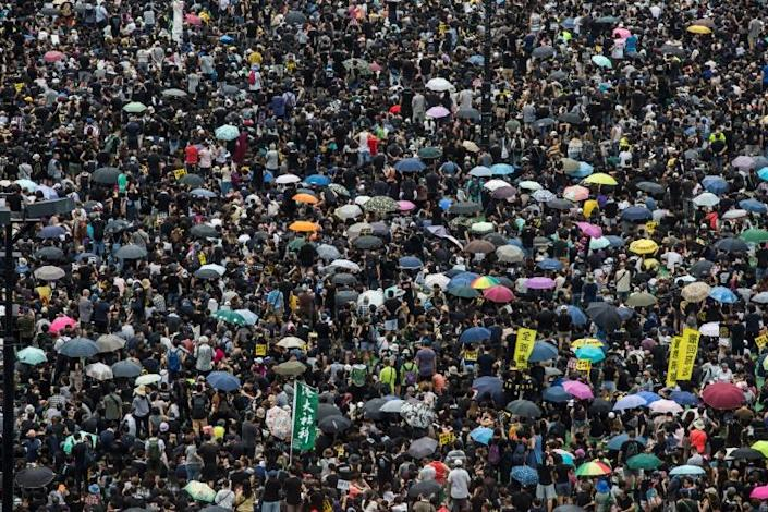 Facebook said some of the posts from accounts it banned compared the protesters in Hong Kong with Islamic State group militants (AFP Photo/ISAAC LAWRENCE)