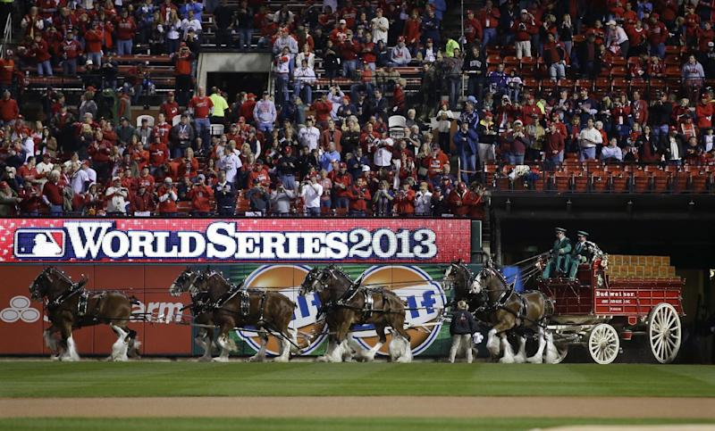 Budweiser Clydesdales enter Busch Stadium before Game 4 of baseball's World Series between the St. Louis Cardinals and the Boston Red Sox, Sunday, Oct. 27, 2013, in St. Louis. (AP Photo/Matt Slocum)