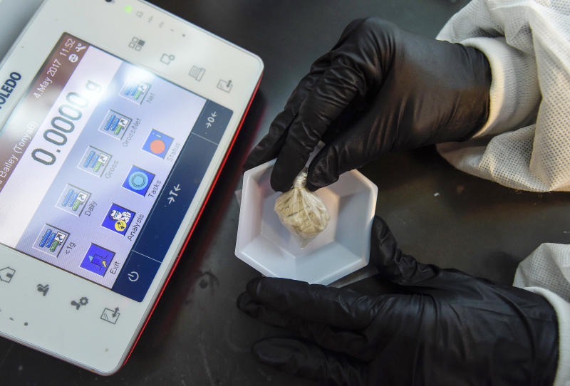 "A forensic chemist prepares a sample of the drug ""gray death"" to be weighed at the crime lab of the Georgia Bureau of Investigations in Decatur, Ga., on Thursday, May 4, 2017. The new and dangerous opioid combo underscores the ever-changing nature of the U.S. addictions epidemic. Investigators who nicknamed the mixture have detected it or recorded overdoses blamed on it in Alabama, Georgia and Ohio. (AP Photo/Mike Stewart)"