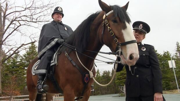 The Royal Newfoundland Constabulary mounted unit has found a new home at the Rainbow Riders facility in St. John's. It will still spend the summer months at Government House.