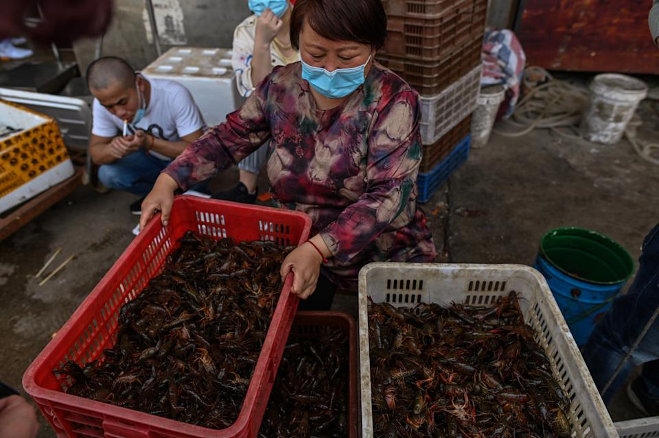 """This photo taken on April 15, 2020 shows a woman wearing a face mask as she offers prawns for sale at the Wuhan Baishazhou Market in Wuhan in China's central Hubei province. - China's """"wet"""" markets have gained a bad international reputation as the coronavirus roiling the world is believed to have been born in stalls selling live game in Wuhan late last year. (Photo by Hector RETAMAL / AFP) / TO GO WITH Health-virus-China,SCENE by Jing Xuan Teng (Photo by HECTOR RETAMAL/AFP via Getty Images)"""