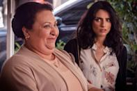 """<p>This Spanish-language dark comedy follows the De la Mora family, a wealthy clan that runs an upscale flower business while hiding a few secrets. The series features many touchstones of the telenovela—major cliff-hangers, <em>lots</em> of drama—while poking fun at it. Fans of <em>The House of Flowers</em> also praise it for its progressive storylines about transitioning, interracial relationships, and more.</p> <p><a href=""""https://www.netflix.com/title/80160935"""" rel=""""nofollow noopener"""" target=""""_blank"""" data-ylk=""""slk:Available to stream on Netflix"""" class=""""link rapid-noclick-resp""""><em>Available to stream on Netflix</em></a></p>"""