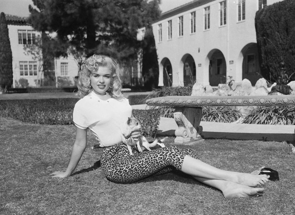 <p>In 1955, her manager negotiated a seven-year contract with Warner Bros. for the rising star. Here, Mansfield is seen on the grounds of the studio with her Chihuahua. </p>