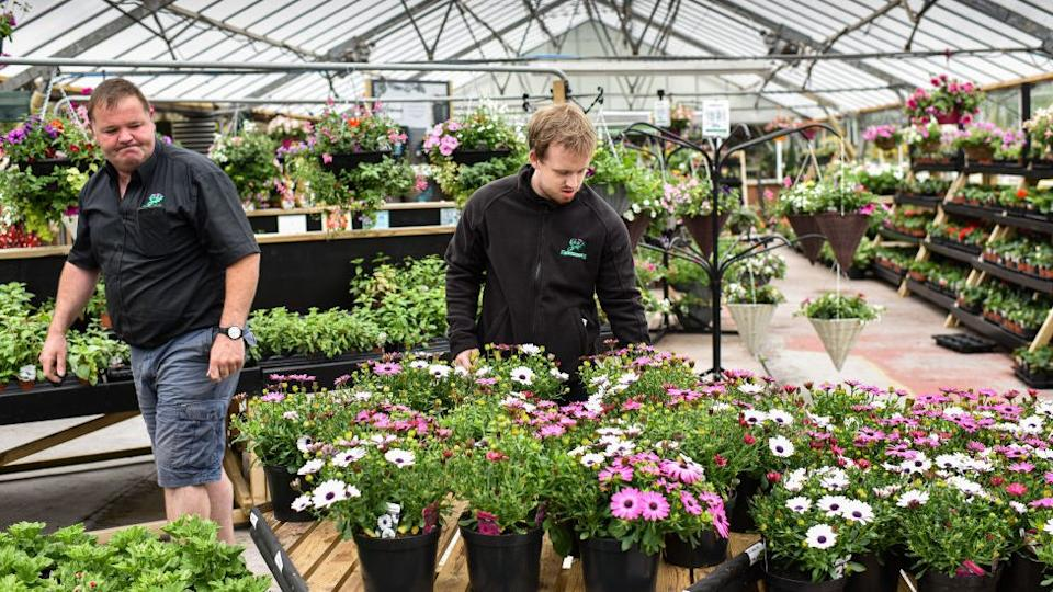 Two garden centre workers