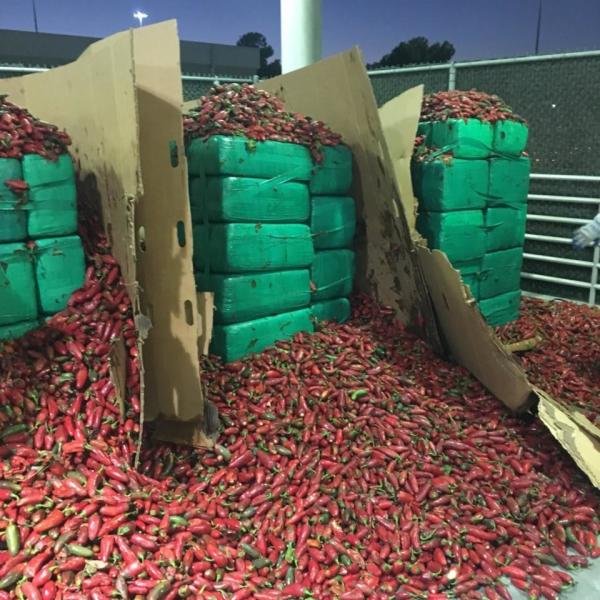 In this Thursday, Aug 15, 2019, photo released by U.S. Customs and Border Protection shows almost four tons of marijuana seized by Otay Mesa, CBP officers in Otay, Calif. Officials say they seized $2.3 million worth of marijuana mixed in with a shipment of jalapeño peppers at a Southern California port. A Customs and Border Protection K-9 unit alerted officers to a shipment of peppers Thursday at the Otay Mesa cargo facility in San Diego. A CBP news release says officers discovered more than 7,500 lbs (3401 kilograms) of marijuana in the peppers' pallets. Acting CBP Commissioner Mark Morgan congratulated the officers on Twitter. (U.S. Customs and Border Protection via AP)