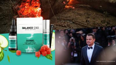Balance CBD Teams up with Leonardo DiCaprio's Earth Alliance Amazon Forest Fund to help the rainforest by donating all profits of its best selling products for the entire month of September. We challenge all other cannabis related companies to help our rain forests. Photo Credits: taniavolobueva/shutterstock.com