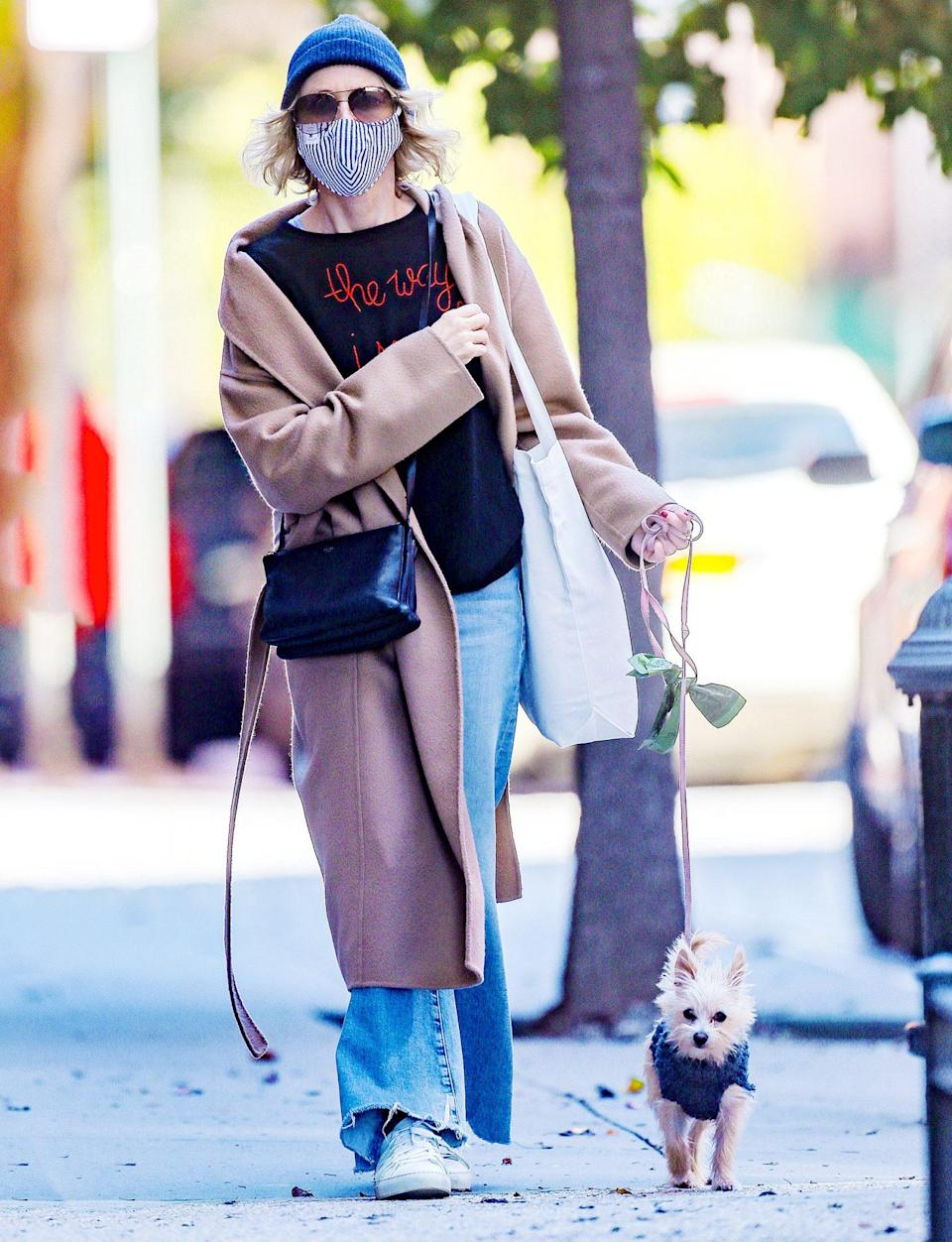 <p>Naomi Watts takes her sweet pup for a walk in N.Y.C. on Sunday.</p>