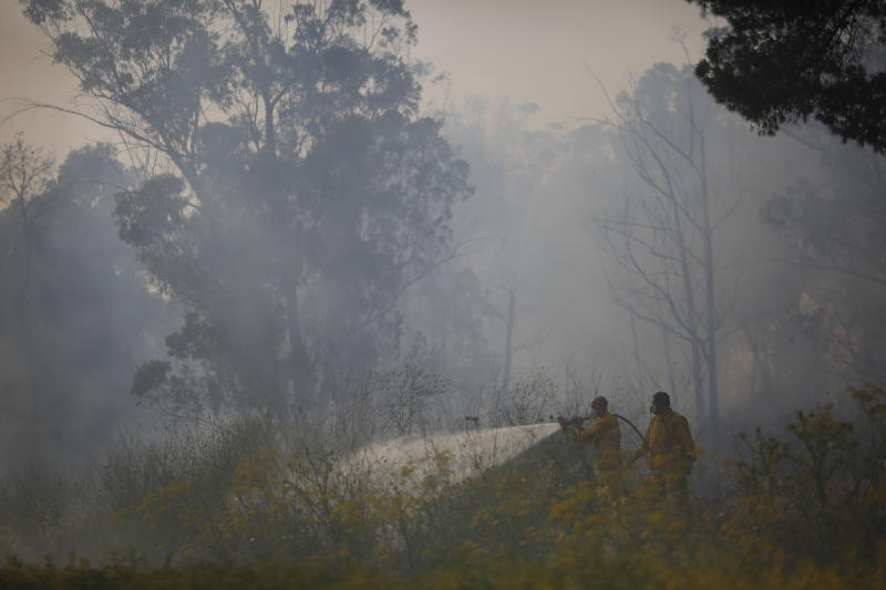 Fire fighters extinguish a forests fire near Kibbutz Harel, Israel, Thursday, May 23, 2019. Israeli police have ordered the evacuation of several communities in southern and central Israel as wildfires rage amid a major heatwave. (AP Photo/Ariel Schalit)