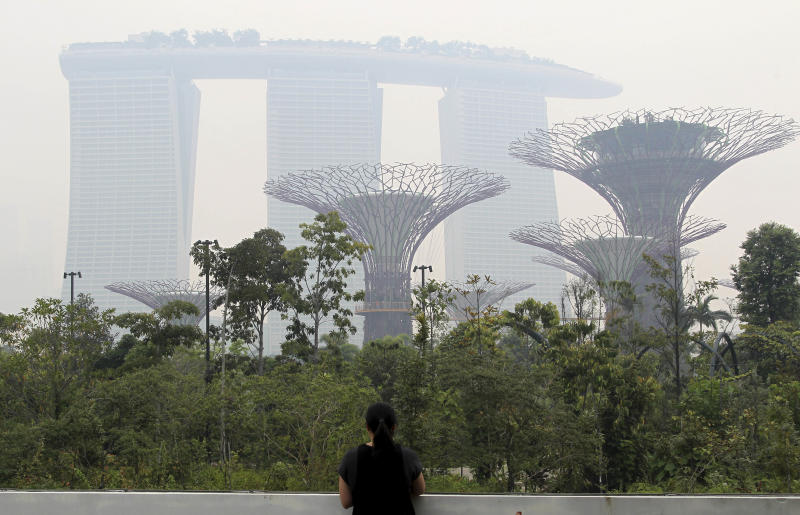"This photo taken on Monday, June 17, 2013 shows the Marina Bay Sands hotel and the Supertrees at Gardens By The Bay covered in haze.  The Pollutant Standards Index, Singapore's main measure to determine air quality, crept into the ""unhealthy"" classification Monday as smoke from roaring blazes on Indonesia's Sumatra island drifted across the sea and cast a gray pall over the city-state's skyscrapers. (AP Photo/Wong Maye-E)"