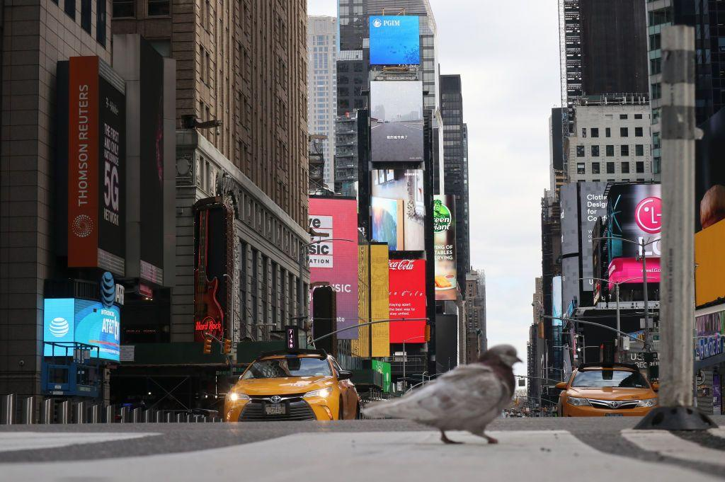 <p>Broadway is dark and stores are closed, but this NewYork City pigeon doesn't seem to mind. </p>
