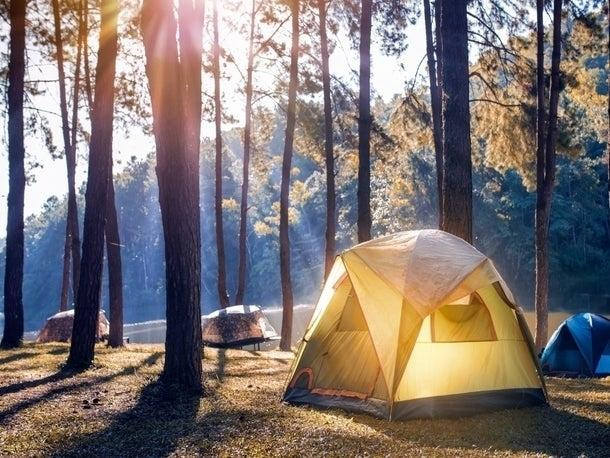 Camping is allowed for counties in phases 2 and 3.
