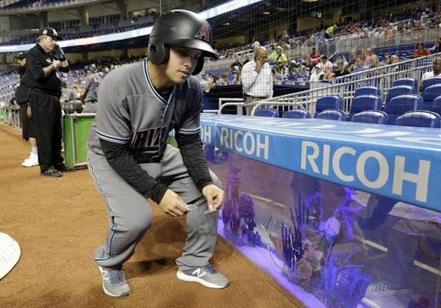 A ball boy removes broken glass from near the fish tank at Marlins Park. The glass was cracked on a foul ball by Miami's J.T. Realmuto. (AP)