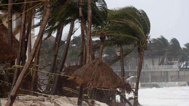 PHOTO: Winds blow palm trees from Hurricane Zeta in Playa del Carmen, Mexico, Oct. 27, 2020.  (Tomas Stargardter/AP)