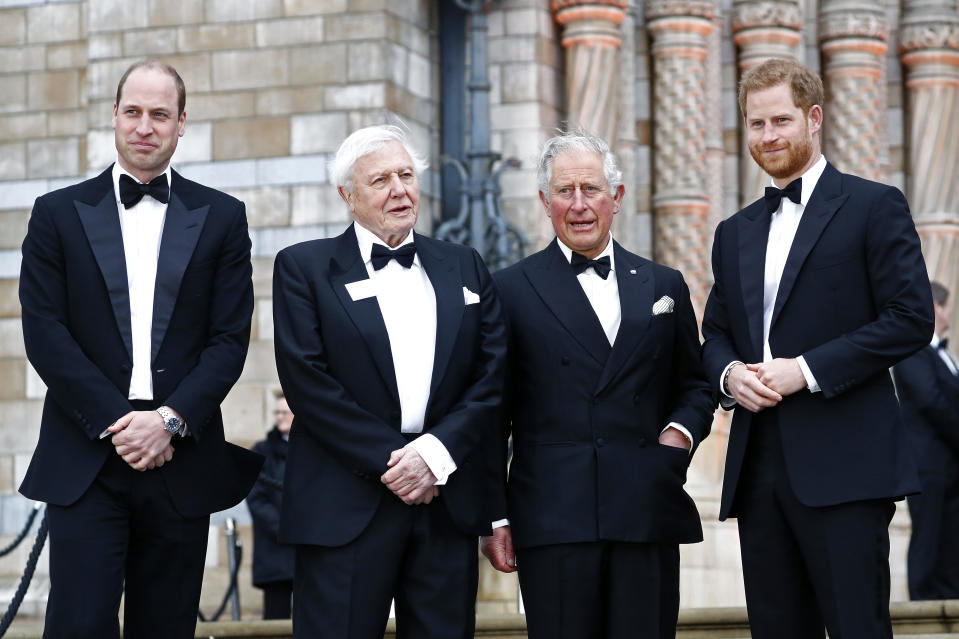 "Two generations of royals with Sir David as Prince William, Prince Charles, and Prince Harry attended the ""Our Planet"" global premiere at the Natural History Museum in 2019. All the men look very dapper for the event. (John Phillips/Getty Images)"