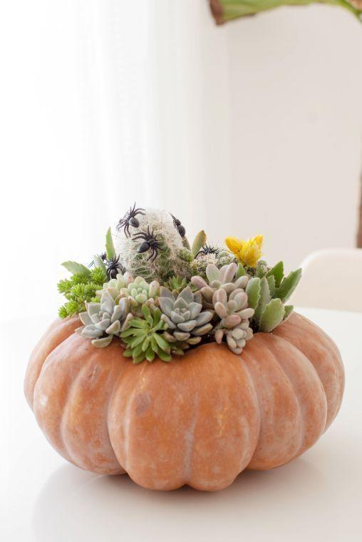 """<p>Green thumbs (and non-green thumbs!), you're going to love this chic idea: Plant a few beautiful succulents inside of a faux pumpkin for a creative display.</p><p><strong>Get the tutorial at <a href=""""https://melo-drama.com/2017/10/19/halloween-decor-idea-pumpkin-succulent-and-cacti-planter/"""" rel=""""nofollow noopener"""" target=""""_blank"""" data-ylk=""""slk:Melodrama"""" class=""""link rapid-noclick-resp"""">Melodrama</a>.</strong></p><p><strong><a class=""""link rapid-noclick-resp"""" href=""""https://go.redirectingat.com?id=74968X1596630&url=https%3A%2F%2Fwww.walmart.com%2Fip%2FHalloween-Artificial-Pumpkin-Simulation-Fake-Lifelike-Props-Garden-Home-Decor%2F371789666&sref=https%3A%2F%2Fwww.thepioneerwoman.com%2Fholidays-celebrations%2Fg32894423%2Foutdoor-halloween-decorations%2F"""" rel=""""nofollow noopener"""" target=""""_blank"""" data-ylk=""""slk:SHOP FAUX PUMPKINS"""">SHOP FAUX PUMPKINS</a><br></strong></p>"""