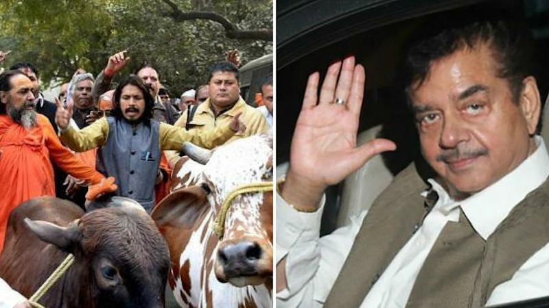 Shatrughan Sinha Lashes Out at Defenders of Gau Rakshaks in BJP