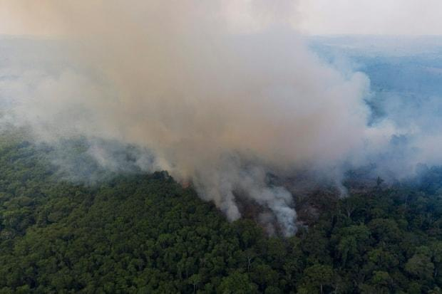 Smoke rises from a fire in the Amazon rainforest near the Trans-Amazon highway in Ruropolis, Para state, Brazil, in this November 2019 photo. (Leo Correa/The Associated Press - image credit)