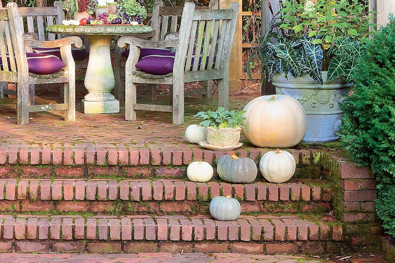 """<p>Black and white 'Lumina,' 'Moonshine,' and 'Jarrahdale' pumpkins set a mysterious air in your garden. Cluster them on your steps or pile them up on a table. If you can't find white or gray pumpkins locally, try spray paint. We like using Design Master Colortool sprays (<a href=""""http://dmcolor.com"""" target=""""_blank""""><em>dmcolor.com</em></a>).</p>"""