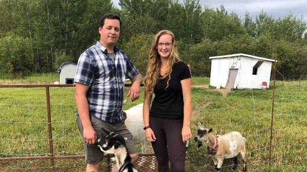 Kenny Ross and Amelia Keesman rent a farm in Val-d'Or and offer mobile zootherapy in the Abitibi region. The couple are looking to buy land where they can build a permanent animal shelter that will also offer therapy services to people of all ages. (Marc-André Landry/Radio-Canada - image credit)