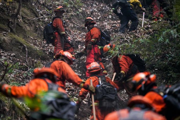 A fire crew cuts down foliage and trees in Boulder Creek, Calif. (Kent Nishimura/Los Angeles Times via Getty Images)