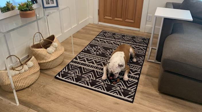 This Ruggable rug is dog approved.