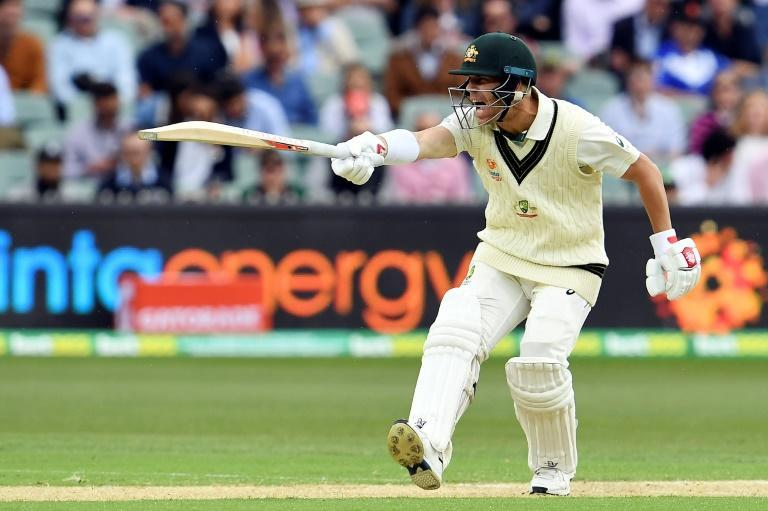 Australia's David Warner was 45 not out after the opening session of the day-night Test against Pakistan (AFP Photo/William WEST)