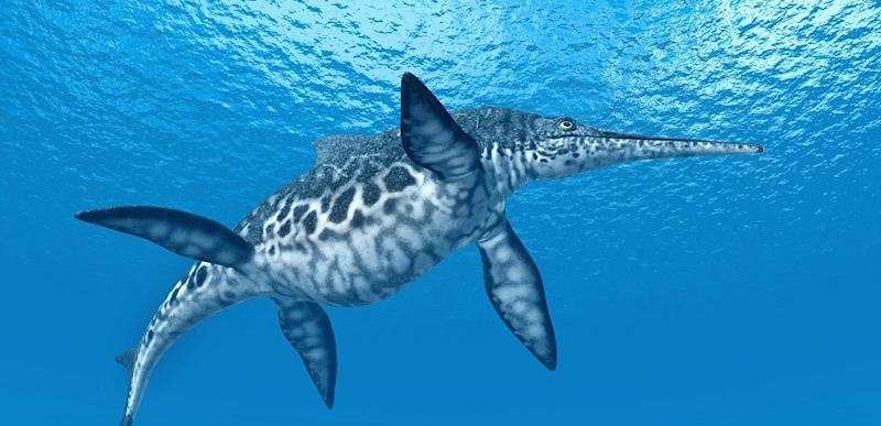 Computer-generated rendering of the ichthyosaur swimming underwater