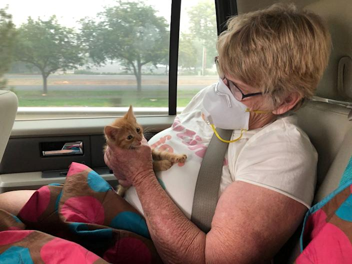 """Wildfire evacuee Susie McMillan, 76, cradles a stray kitten she rescued after visiting the charred remains of her home in Phoenix, Ore., this weekend. <span class=""""copyright"""">(Molly Hennessy-Fiske/Los Angeles Times)</span>"""
