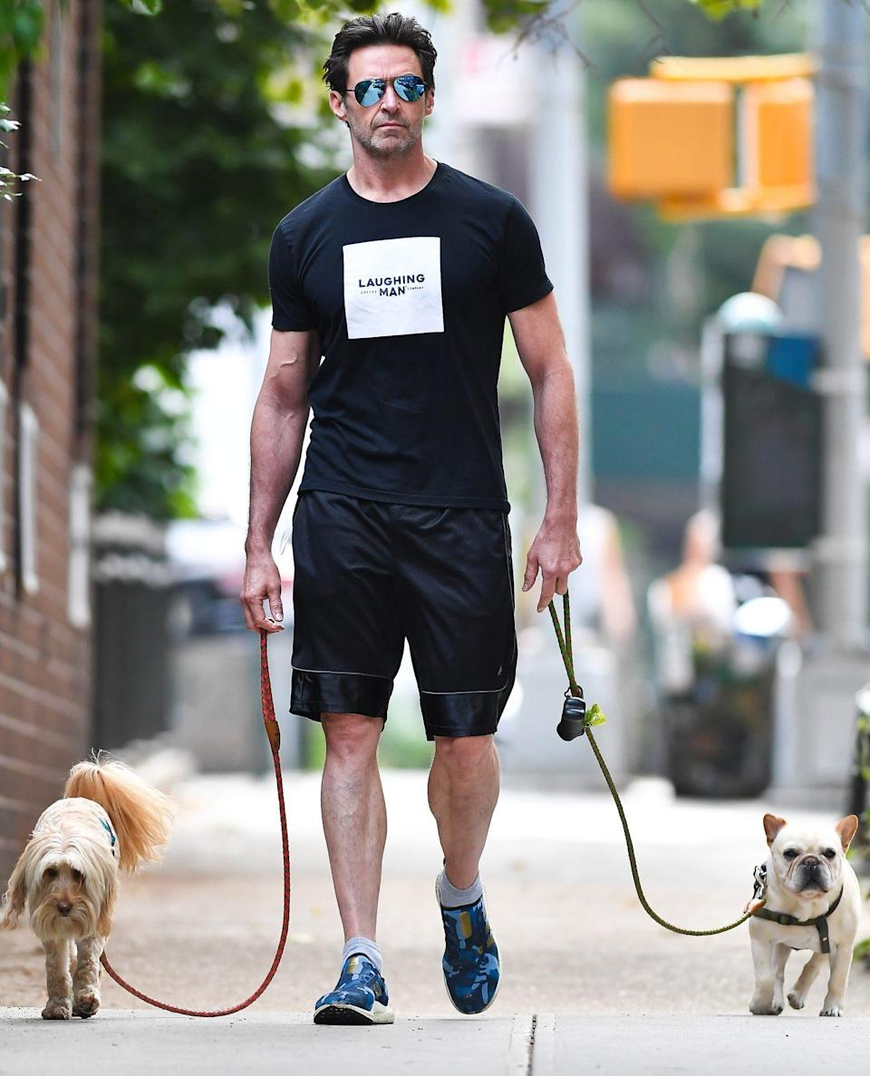 <p>Hugh Jackman has a leash in each hand as he walks his pups through New York City on July 29.</p>