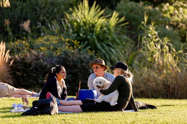 Three friends and a dog enjoy the perfect Melbourne weather in the Botanical Gardens.