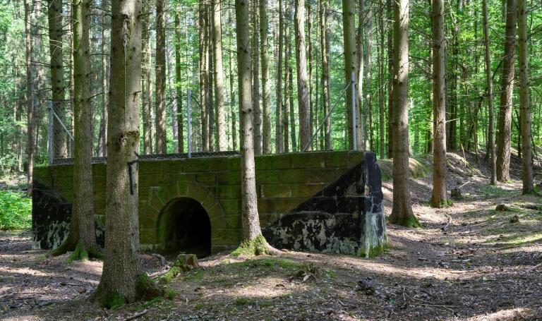The 1930s era project has been swallowed up in the Bavarian forest (AFP Photo/THOMAS KIENZLE)