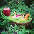 """<p>OK, so this is where it gets complicated. Gisele and the kiddos eat fruit, but Tom? Not so much. According to Campbell, """"he will eat bananas in a smoothie. But otherwise, he prefers not to eat fruits."""" Apparently Tom prefers vegetables.</p><p><a rel=""""nofollow noopener"""" href=""""https://www.instagram.com/p/rNjCAnHtHa/"""" target=""""_blank"""" data-ylk=""""slk:See the original post on Instagram"""" class=""""link rapid-noclick-resp"""">See the original post on Instagram</a></p>"""