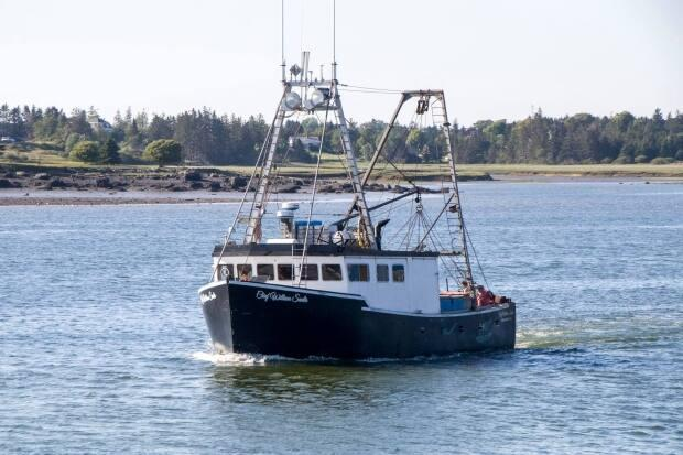 The Chief William Saulis scallop fishing vessel is pictured here in November 2020. (Katherine Bickford - image credit)