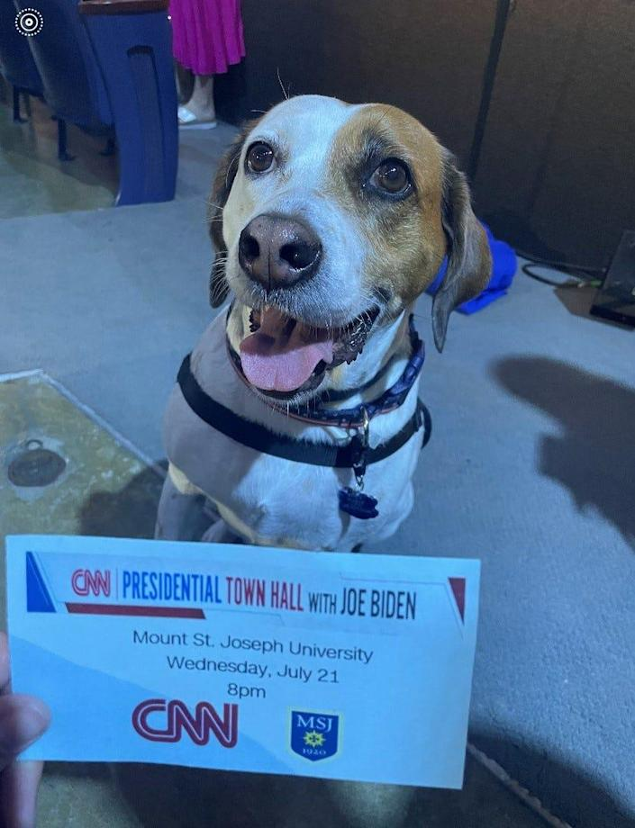 Wonder, the 5-year-old service dog, who made a cameo on the CNN's Mount Saint Joseph University town hall with President Joe Biden.