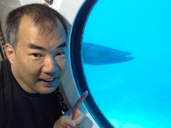 JAXA astronaut Soichi Noguchi in the Aquarius underwater laboratory, with a barracuda in the background. Noguchi was on the SEATEST crew that worked in the lab in September 2013.