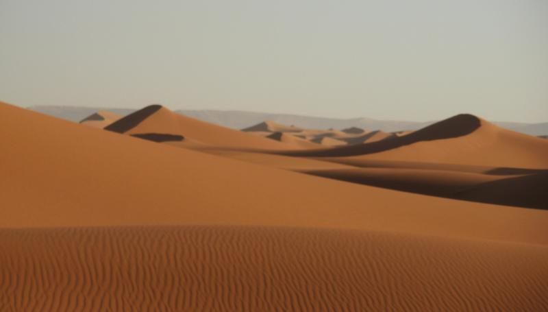 Desert rain: Scientists find a way to vegetate the Sahara