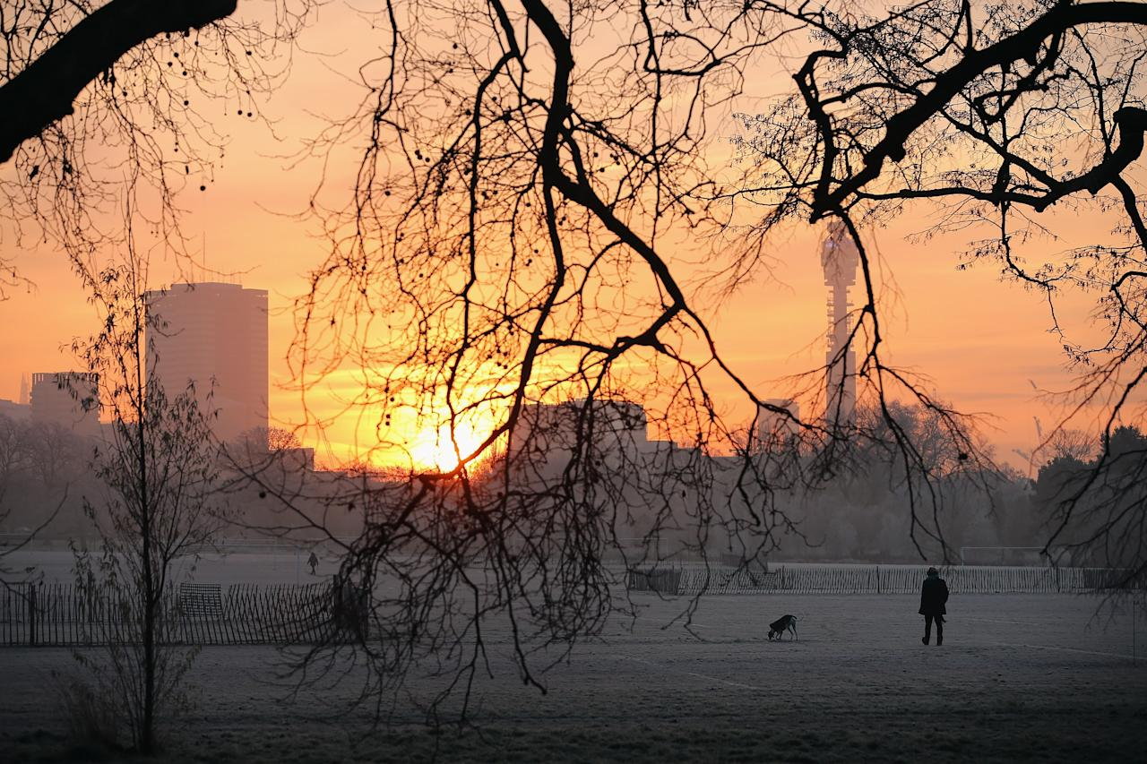 LONDON, ENGLAND - DECEMBER 12:  A man walks his dog through the early morning frost in Regents Park on December 12, 2012 in London, England. Forecasters have warned that the UK could experience the coldest day of the year so far today, with temperatures dropping as low as -14C, bringing widespread ice, harsh frosts and freezing fog. Travel disruption is expected with warnings for heavy snow in some parts of the country.  (Photo by Dan Kitwood/Getty Images)