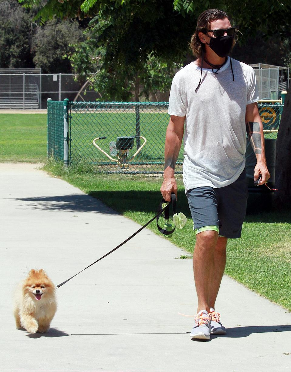 <p>Gavin Rossdale masks up for a walk with his dog in Los Angeles on Friday.</p>