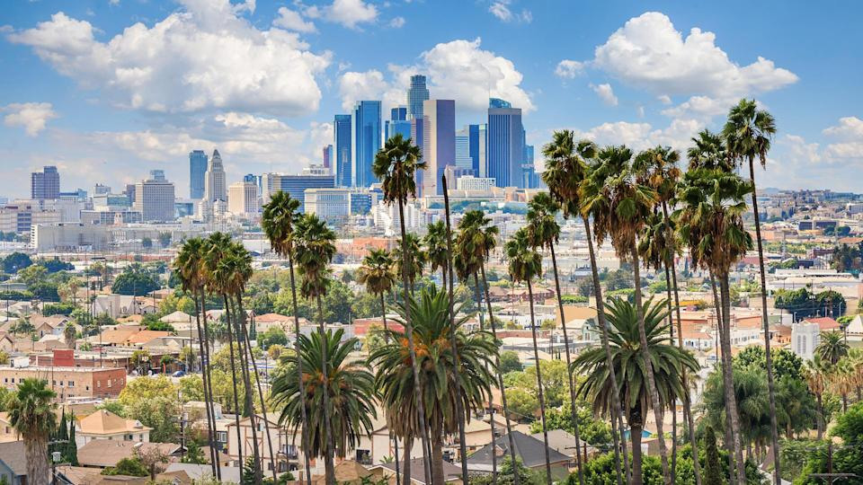 Beautiful cloudy day of Los Angeles downtown skyline and palm trees in foreground.