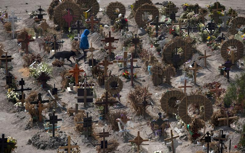 Cemetery foreman Juan Rivera walks with his dogs in the Municipal Cemetery of Valle de Chalco amid the coronavirus pandemic, in the outskirts of Mexico City - AP