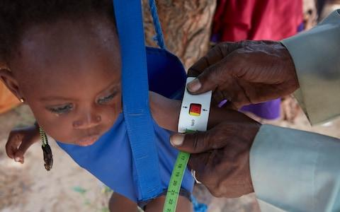 A child is weighed and arm measured at the Red Cross nutrition centre in the village of Kiéché, southern Niger - Credit: British Red Cross/Yuki Sugiura
