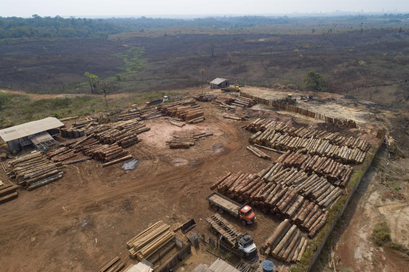 FILE - In this Sept. 2, 2019 file photo, logs lay at a lumber mill surrounded by recently charred and deforested fields near Porto Velho, Rondonia state, Brazil. While the vast Amazon rainforest acts as a bulwark against climate change because its lush vegetation absorbs heat-trapping carbon dioxide, experts say current fires are manmade, often set illegally by land grabbers who are clearing the forest for cattle ranching and crops. (AP Photo/Andre Penner, File)